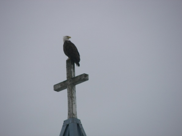 Eagle on Cross
